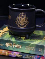 Gadżety z filmów o Harrym Potterze – odzież i akcesoria